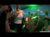 PartyHardcore.comTainster.com Party Hardcore Gone Crazy Vol. 12 Part 4 (2014) HD
